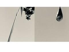 47 Fuen de Miguel (espaciosparaelarte) Tags: arte artecontemporáneo bellasartes blancoynegro cultura comunidaddemadrid creación exposición exposiciones espaciosparaelarte calle universos vuelo paloma hoja agua gota mano sombra ojo papel detalle contraste díptico davidjiménez cielo