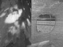 41 María Vega-Leal.jpg (espaciosparaelarte) Tags: arte artecontemporáneo bellasartes blancoynegro cultura comunidaddemadrid creación exposición exposiciones espaciosparaelarte calle universos vuelo paloma hoja agua gota mano sombra ojo papel detalle contraste díptico davidjiménez cielo
