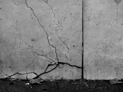 21 Carmen Riestra (espaciosparaelarte) Tags: arte artecontemporáneo bellasartes blancoynegro cultura comunidaddemadrid creación exposición exposiciones espaciosparaelarte calle universos vuelo paloma hoja agua gota mano sombra ojo papel detalle contraste díptico davidjiménez cielo