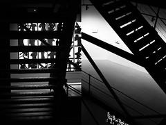 11 Alfonso C. Orive (espaciosparaelarte) Tags: arte artecontemporáneo bellasartes blancoynegro cultura comunidaddemadrid creación exposición exposiciones espaciosparaelarte calle universos vuelo paloma hoja agua gota mano sombra ojo papel detalle contraste díptico davidjiménez cielo