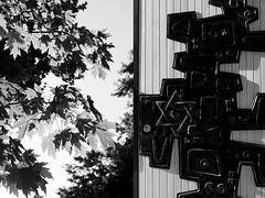 10 Alfonso C. Orive (espaciosparaelarte) Tags: arte artecontemporáneo bellasartes blancoynegro cultura comunidaddemadrid creación exposición exposiciones espaciosparaelarte calle universos vuelo paloma hoja agua gota mano sombra ojo papel detalle contraste díptico davidjiménez cielo