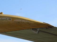 "de Havilland Canada U-6A Beaver 60 • <a style=""font-size:0.8em;"" href=""http://www.flickr.com/photos/81723459@N04/48378587846/"" target=""_blank"">View on Flickr</a>"