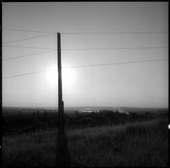 ⵏ (petersoloway) Tags: scan analog yashicamat124g ilfotecddx ddx fomapan fomapan100 iso100 yellowfilter middleformat squarebw volgariver horizont forest trees shadow sun grass village amachkino 6x6 120film tlr