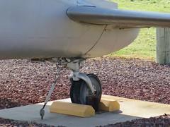 "de Havilland Canada U-6A Beaver 49 • <a style=""font-size:0.8em;"" href=""http://www.flickr.com/photos/81723459@N04/48378738212/"" target=""_blank"">View on Flickr</a>"