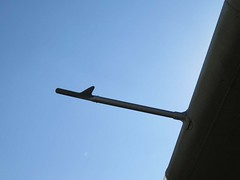 "de Havilland Canada U-6A Beaver 42 • <a style=""font-size:0.8em;"" href=""http://www.flickr.com/photos/81723459@N04/48378741442/"" target=""_blank"">View on Flickr</a>"