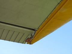 "de Havilland Canada U-6A Beaver 40 • <a style=""font-size:0.8em;"" href=""http://www.flickr.com/photos/81723459@N04/48378742167/"" target=""_blank"">View on Flickr</a>"
