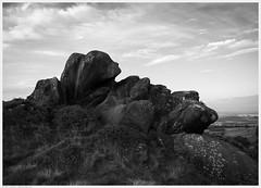 _DSC1994 (alexcarnes) Tags: ramshaw rocks roaches leek staffordshire stokeontrent alex carnes alexcarnes nikon d850 nikkor 28mm f28d