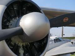 "de Havilland Canada U-6A Beaver 4 • <a style=""font-size:0.8em;"" href=""http://www.flickr.com/photos/81723459@N04/48378762952/"" target=""_blank"">View on Flickr</a>"