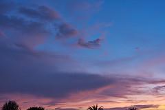 2019-07-25 19-54-14_012_Vivitar VMC 50mm f1.7 (wNG555) Tags: 2019 arizona phoenix sunset vivitarautovmc50mmf17 fav25