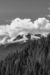 Mt. Begbie (SNAPShots by Patrick J. Whitfield) Tags: blackandwhite bw bnw noire noiretblanc monochrome mountains outside nature life exploring adventure hiking trees trails canada light summer highlights details dof lines patterns textures pov clouds flickr rockies rocks britishcolumbia