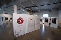 Monta oksaa -kirjan julkistamistilaisuus ja näyttelyn avajaiset