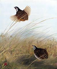 Japanese quail (Japanese Flower and Bird Art) Tags: bird quail coturnix japonica phasianidae kenpo kawamura modern painting japan japanese art readercollection