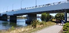 Want to Buy a Bridge? (Bill 3 Million views) Tags: pointellicehouse pointellice bridges baystreetbridge baystreet construction repairs