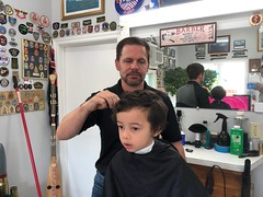 Ezra gets a haircut (brownpau) Tags: ezra ezraordo barber coleharbour novascotia canada haircut iphonex torzano