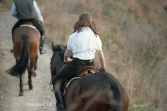 N 56-4  8504 (chausson bs) Tags: barcelona carreteradelesaigües 1985 cavalls caballos cavalos horses chevals amazona equestrienne horsegirls horsewoman