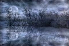 Frío paisaje con textura (Fernando Forniés Gracia) Tags: españa aragón zaragoza invierno paisaje texturas landscape