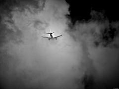 Adentro (Luicabe) Tags: airelibre aparato avión blancoynegro cabello cielo enazamorado exterior luicabe luis monocromático naturaleza ngc nube paisaje vueloave yarat1 zamora zoom