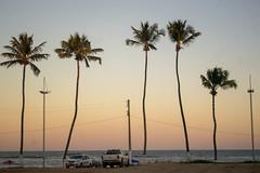 DSC_5844_edited (Proflázaro) Tags: brasil alagoas cidade marechaldeodoro praiadofrancês árvore palmeira mar anoitecer entardecer céu pôrdosol veículo carro paisagem paisagemnatural poste água viagem viagempelonordeste nordeste nordestedobrasil beleza belezabrasileira horizonte
