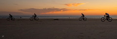 à bicyclette DxOFP LM+21 1006616 (mich53 - thank you for your comments and 6M view) Tags: plage beach sunset cotentin crépuscule leicamtype240 superelmarm21mmf34asph lespieux manche vélo coucherdesoleil cyclistes sables panorama silhouettes france normandie normandy