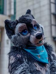 IMG_0910 (KitsuneUK) Tags: londonfurs furry fursuit canon