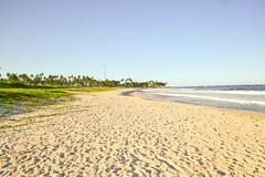 DSC_5906_edited (Proflázaro) Tags: brasil alagoas cidade praiadofrancês marechaldeodoro praia praiademar água areia palmeira árvore coqueiro coqueiral entardecer pôrdosol paisagem paisagemnatural horizonte nordeste