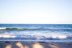 DSC_5908_edited (Proflázaro) Tags: brasil alagoas cidade praiadofrancês praia litoral água céu horizonte cor azul onda viagem paisagem entardecer pôrdosol areia paisagemnatural paisagembrasileira belezabrasileira beleza nordeste nordestedobrasil nikon nikond3100
