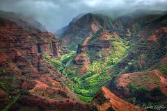 Waimea Canyon Lookout (funtor) Tags: canyon usa hawaii green landscape mountain nature overlook view kauai