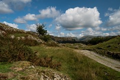 Country Road (Nick Thorne, Bodian Photography) Tags: 2018 bybodianphotography bynickthorne clouds coniston cumbria england fells flickr flora geographicalfeatures lakedistrict langdales location photographer rightsofway road rocks sky themed track weather year tree