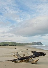 The lonely coast (dave.fergy) Tags: coast beach driftwood clouds sky blue green