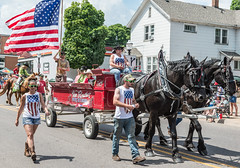 Percherons (scattered1) Tags: july4th vanelsacker flag marquette upperpeninsula parade michigan cart summer northernmichigan team northern independenceday black mi 2019 percherons horse