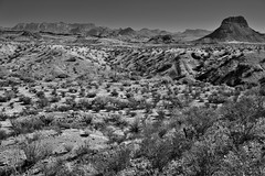 There Are Those Moments... (Black & White, Big Bend National Park)