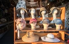 Mannequin Heads - Venice Beach, California (ChrisGoldNY) Tags: chrisgoldphoto chrisgoldny chrisgoldberg bookcovers albumcovers licensing sonyalpha sonyimages sonya7rii venice venicebeach losangeles california socal cali westcoast usa america