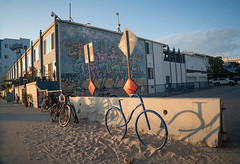 Venice Beach, California (ChrisGoldNY) Tags: chrisgoldphoto chrisgoldny chrisgoldberg bookcovers albumcovers licensing sonyalpha sonyimages sonya7rii venice venicebeach losangeles california socal cali westcoast usa america