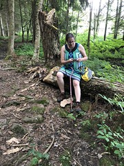 Foresta Trying To Contact Family (amyboemig) Tags: bowman lake state park friends sparkies camping july summer hike foresta ny