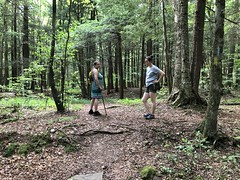 Foresta And Beth Waiting (amyboemig) Tags: bowman lake state park friends sparkies camping july summer hike foresta beth cane ny