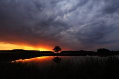 IMG_5472 (geraldtourniaire) Tags: mittelfranken franken landschaft licht l natur nature 1740l ef sonnenaufgang