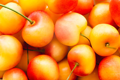 (Hanna Tor) Tags: berryfruit extremecloseup macro summer vegetarianfood agricultural agriculture background beautyinnature berries berry bright cherries cherry closeup color delicious diet eating farm food foodbackground fresh freshness fromabove fruit fruits garden gourmet groupofobjects healthy ingredient juicy many natural nature nopeople nutrition organic rainiercherry refreshment ripe season sweet tasty topview veggie vitamin yellow yellowcherry california usa hannator