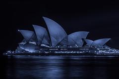 sydney opera house (Greg M Rohan) Tags: nikon d750 nikkor 2019 longexposure nightphotography water architecture nightlights sydney australia icon operahouse sydneyoperahouse 歌劇 シドニー 悉尼 オペラハウス