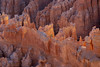 when you feel lonely ... (mariola aga) Tags: brycecanyonnationalpark utah canyon rocks formation lonely tree morning light closeup landscape nature