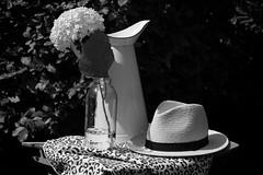 Summer In the garden! (Ageeth van Geest) Tags: smileonsaturday blackandwhiteincolor stilllife hat hydrangea summer