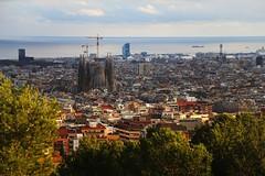 La Sagrada Familia (colosseumrome) Tags: sagradafamilia barcelona travel spain lasagradafamilia basilica church sagradafamiliahistory