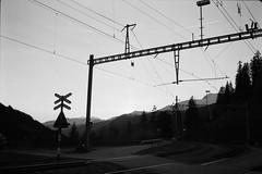 Crossing (vladixp) Tags: ilford fp4 fp4plus fp480 d76 14min 20c 12 praktica mtl5 flektogon k2 pf7250u 3600dpi 35mm yellowfilter filmscan 35mmfilm film bw bwfilm filmphotography negative scanned graubünden grigioni grisons svizzera schweiz switzerland suisse 1000mm narrowgauge add tags rhb rhätischebahn arosa langwies