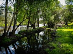 (photographic.zone.instagram) Tags: landscape portugal nature natureza photographiczone green wonderful beautiful