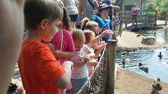 """Cosley Zoo with the Christenson Family • <a style=""""font-size:0.8em;"""" href=""""http://www.flickr.com/photos/109120354@N07/48388165591/"""" target=""""_blank"""">View on Flickr</a>"""
