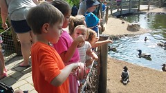 """Cosley Zoo with the Christenson Family • <a style=""""font-size:0.8em;"""" href=""""http://www.flickr.com/photos/109120354@N07/48388165941/"""" target=""""_blank"""">View on Flickr</a>"""