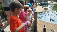 """Cosley Zoo with the Christenson Family • <a style=""""font-size:0.8em;"""" href=""""http://www.flickr.com/photos/109120354@N07/48388166486/"""" target=""""_blank"""">View on Flickr</a>"""