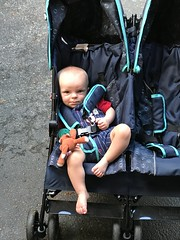 """Luc in His Stroller • <a style=""""font-size:0.8em;"""" href=""""http://www.flickr.com/photos/109120354@N07/48388247402/"""" target=""""_blank"""">View on Flickr</a>"""