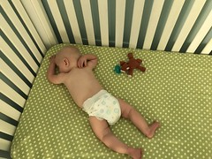 """Luc Sleeps in His Crib • <a style=""""font-size:0.8em;"""" href=""""http://www.flickr.com/photos/109120354@N07/48388362551/"""" target=""""_blank"""">View on Flickr</a>"""