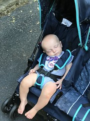 """Sam Sleeps in His Stroller • <a style=""""font-size:0.8em;"""" href=""""http://www.flickr.com/photos/109120354@N07/48388501192/"""" target=""""_blank"""">View on Flickr</a>"""