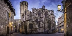 Cathédrale Sainte Eulalie - Barcelone (tof-lo62) Tags: cathédrale sainte eulalie barcelone barcelona barrio basilica basilique espagne espana spain